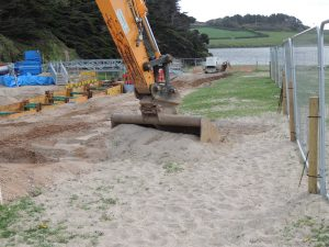 Translocation work on Loe Bar